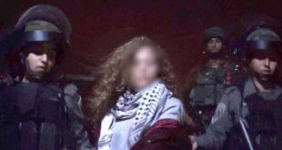 """מעצר הנערה שתקפה חיילים. צילום: דובר צה""""ל"""