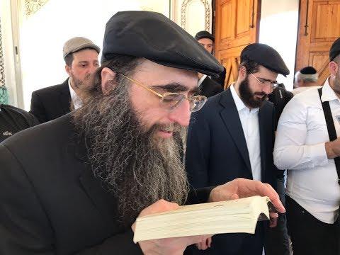 """הרב יאשיהו פינטו שליט""""א"""