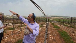 צילום: גילעד הדרי ישראל ניוז