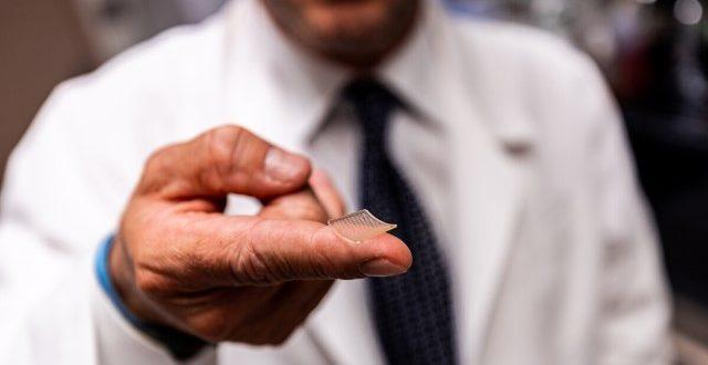 עכברים שעברו חיסון חדש לנגיף הקורונה פיתחו עמידות למחלה